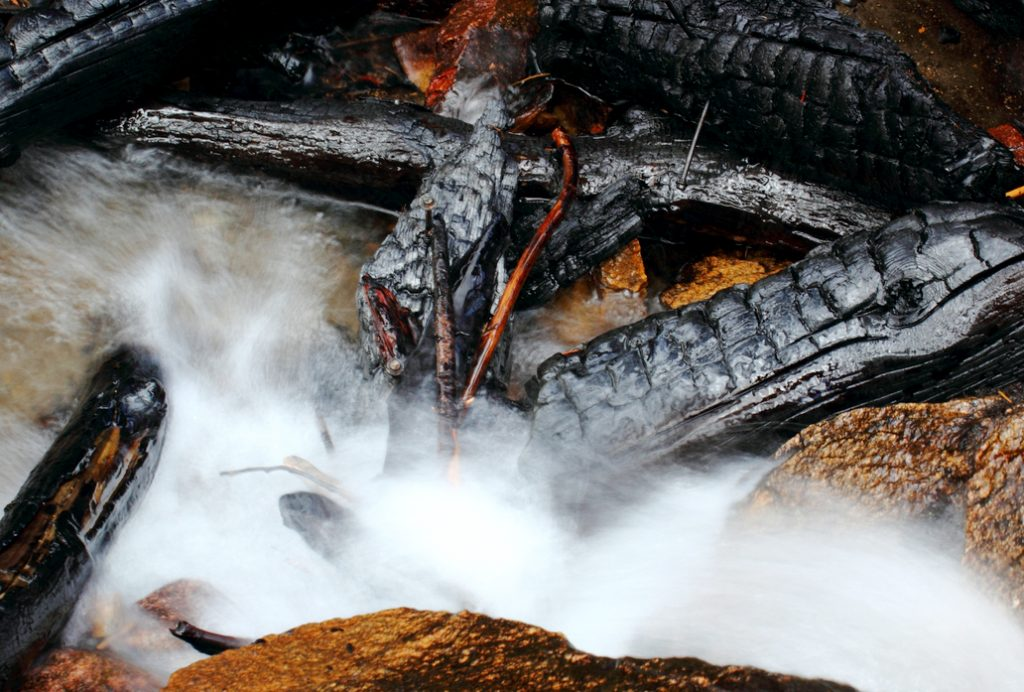 Garfield County sponsoring wildfire burn area mitigation work