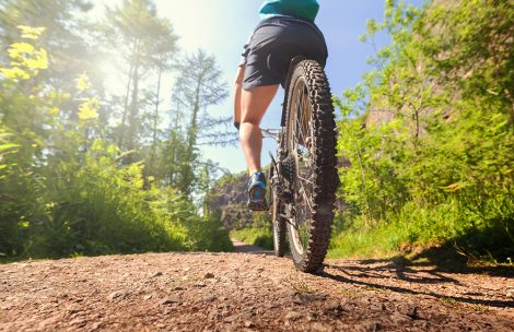 Mountain biker in action on a forest trail concept for healthy lifestyle, exercise and extreme sports.