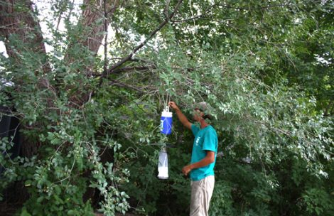 CDC light traps, like the one pictured here, are used in Garfield County to monitor mosquito counts and test for West Nile virus.