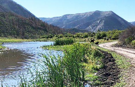 A public road winds bends along a small creek near De Beque, Colorado.