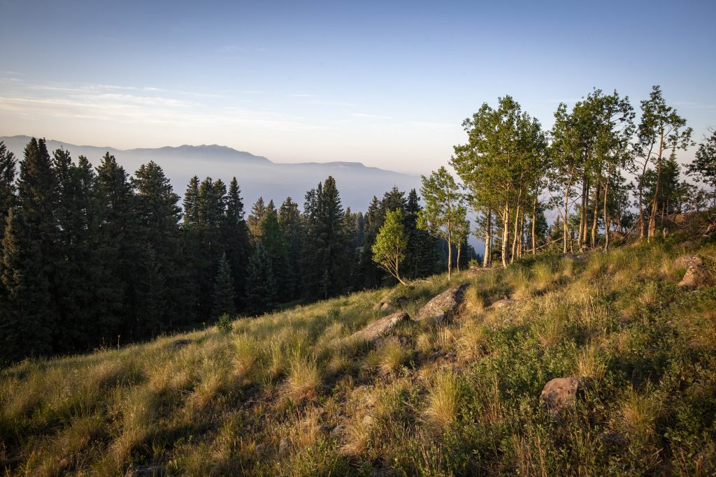 Garfield County to receive $227,000 in National Forest Reserve payments